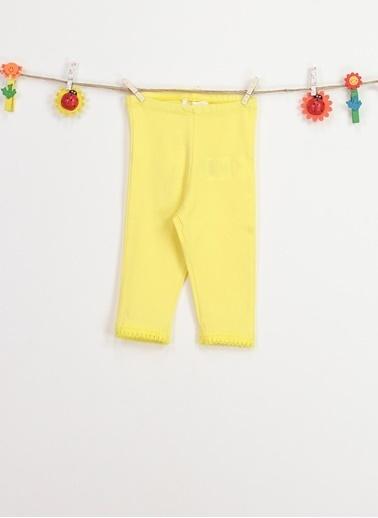 Locopop Tayt Sarı